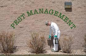 pest control companies auckland
