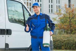 pest control company auckland